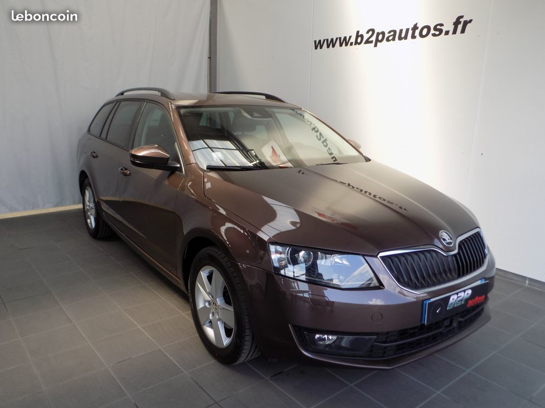 photo vehicule vendu - Skoda octavia sw combi break 1.6 tdi 105cv gps bva